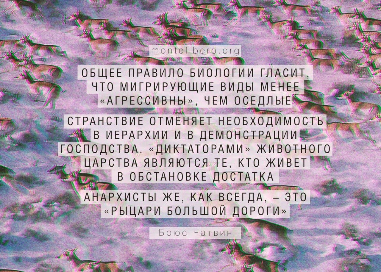 photo_2021-05-10_10-10-18